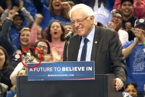 A little birdie told us to vote for Bernie . . .